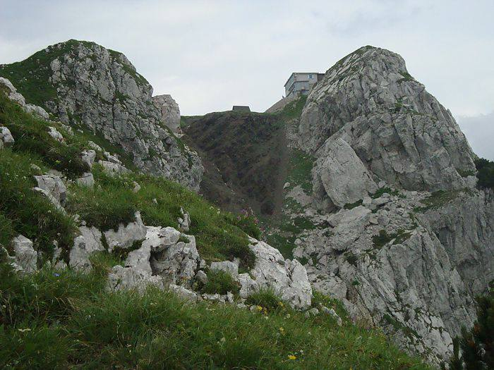 Geranium argenteum 3, Mt. Crna Prst, Slovenia. Credit: Matija Strlic.